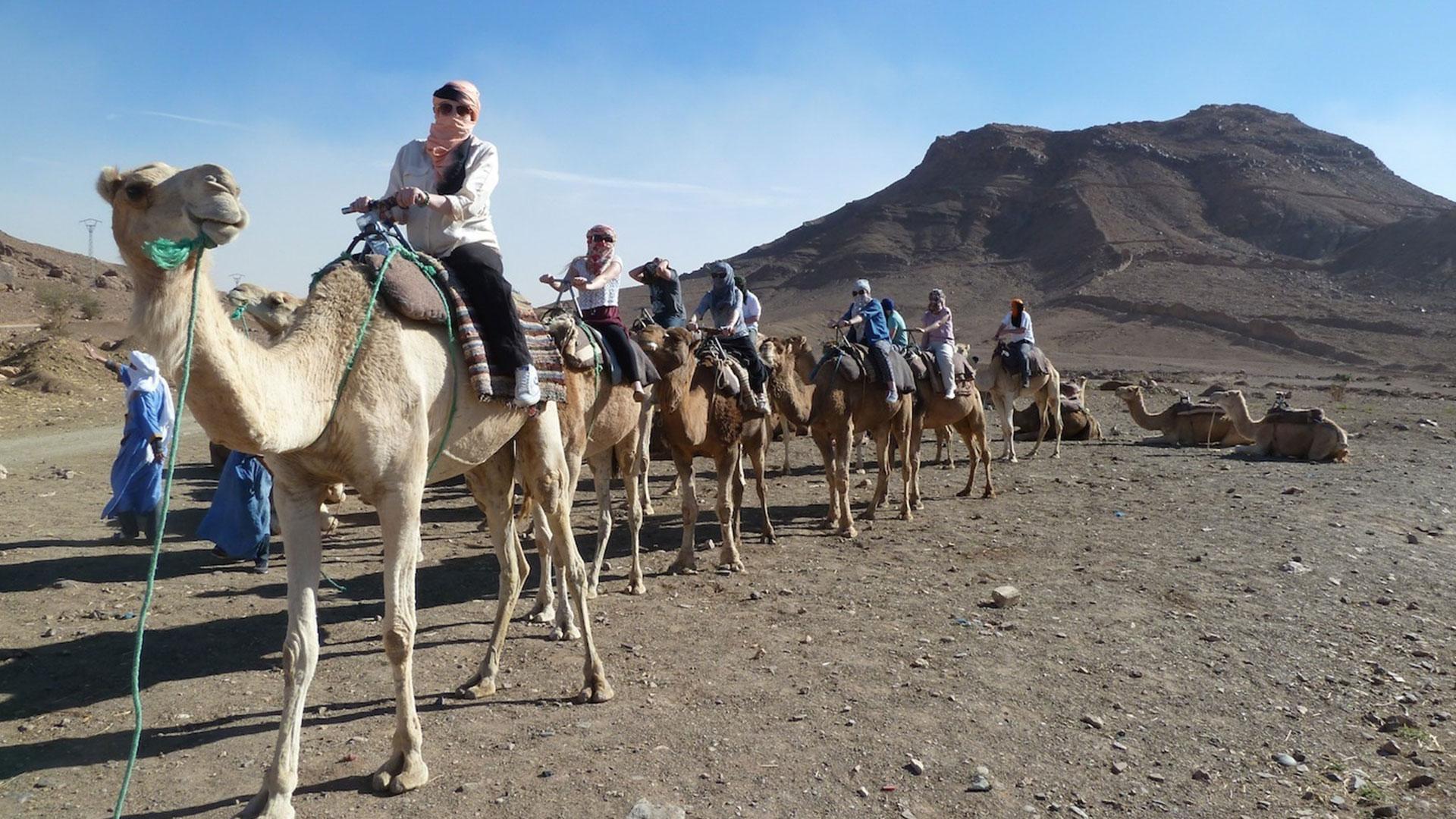The Sahara (Zagora) (MULTIPLE DAY) - ANZALTOURS